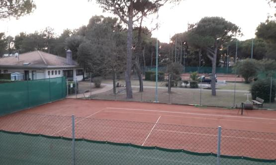 Tennis Bibione Beverly Hill