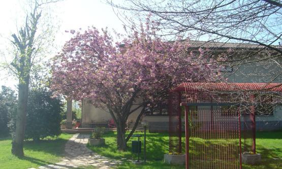 Chivasso Sporting Club