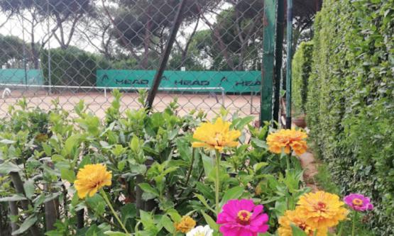 Tennis Club New Magnolie