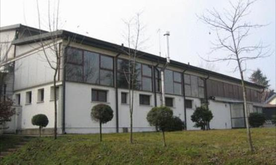 Associazione Polisportiva Dilettantistica Dlf Treviso