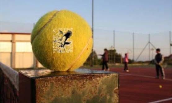 Tennis Club 'La Fenice' Belpasso