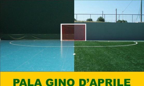 Polivalente Gino D'Aprile