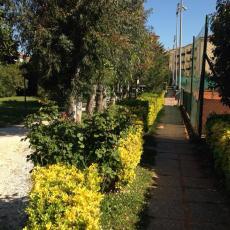 Tennis Ferrovieri Livorno